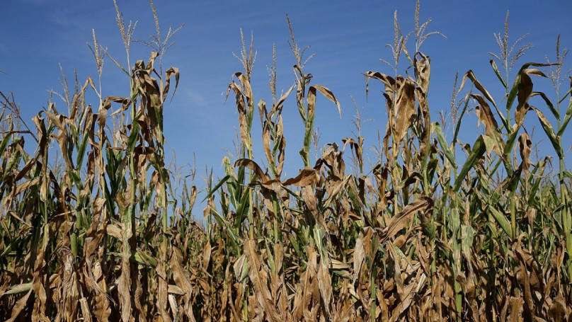 Tech Talk: Exploring the limitations of ethanol