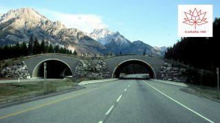 Canada 150 Road Trips