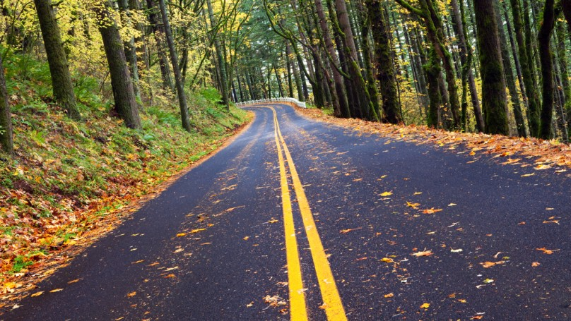 The most overlooked danger of fall driving