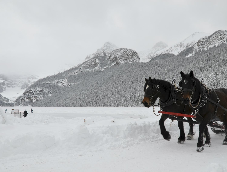 Road Trip Planner: Top 10 Winter Road Trips in Alberta
