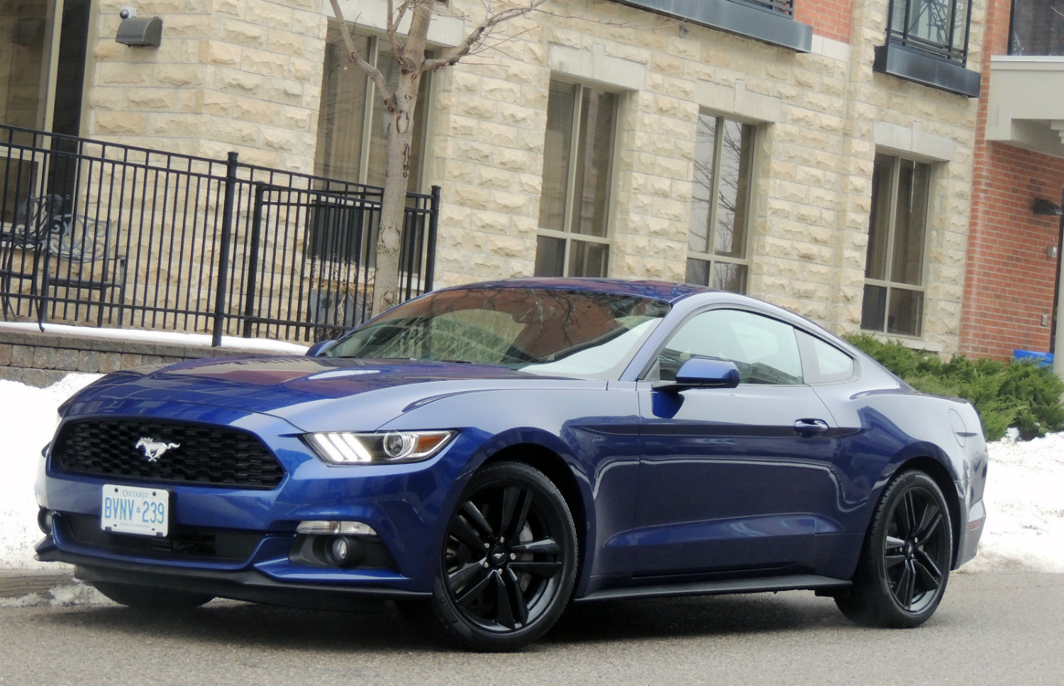 Neil's Top Five Best Cars of 2014
