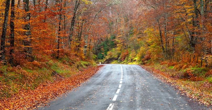 main fall drive
