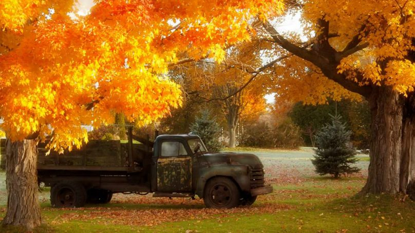 truck-fall-colours