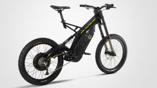 Brinco R-B Electric Bicycle