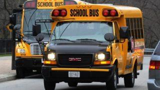 school-buses