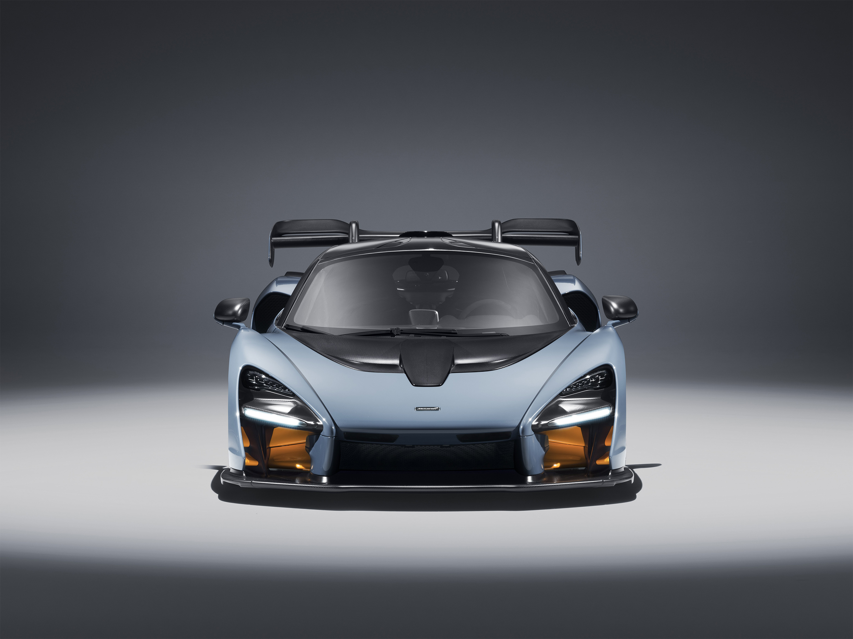 TrackWorthy - McLaren Senna in Victory Grey (12)
