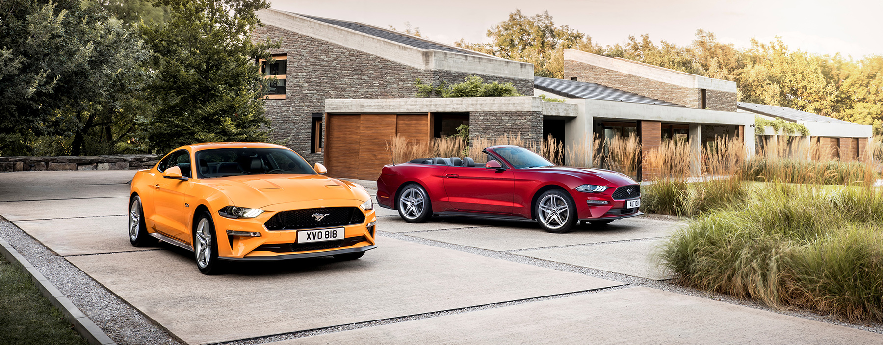 TrackWorthy - 2017 Ford Mustang Coupe and Convertible