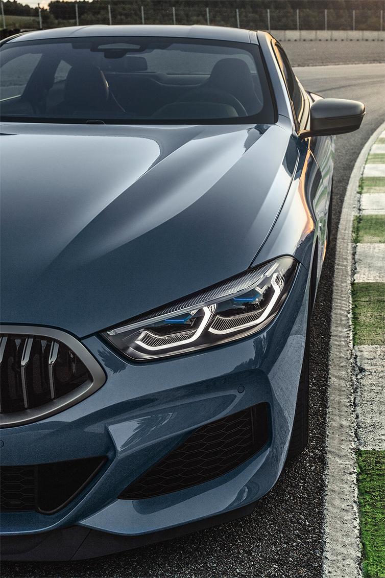 TrackWorthy - 2019 BMW M850i xDrive Coupe (12)