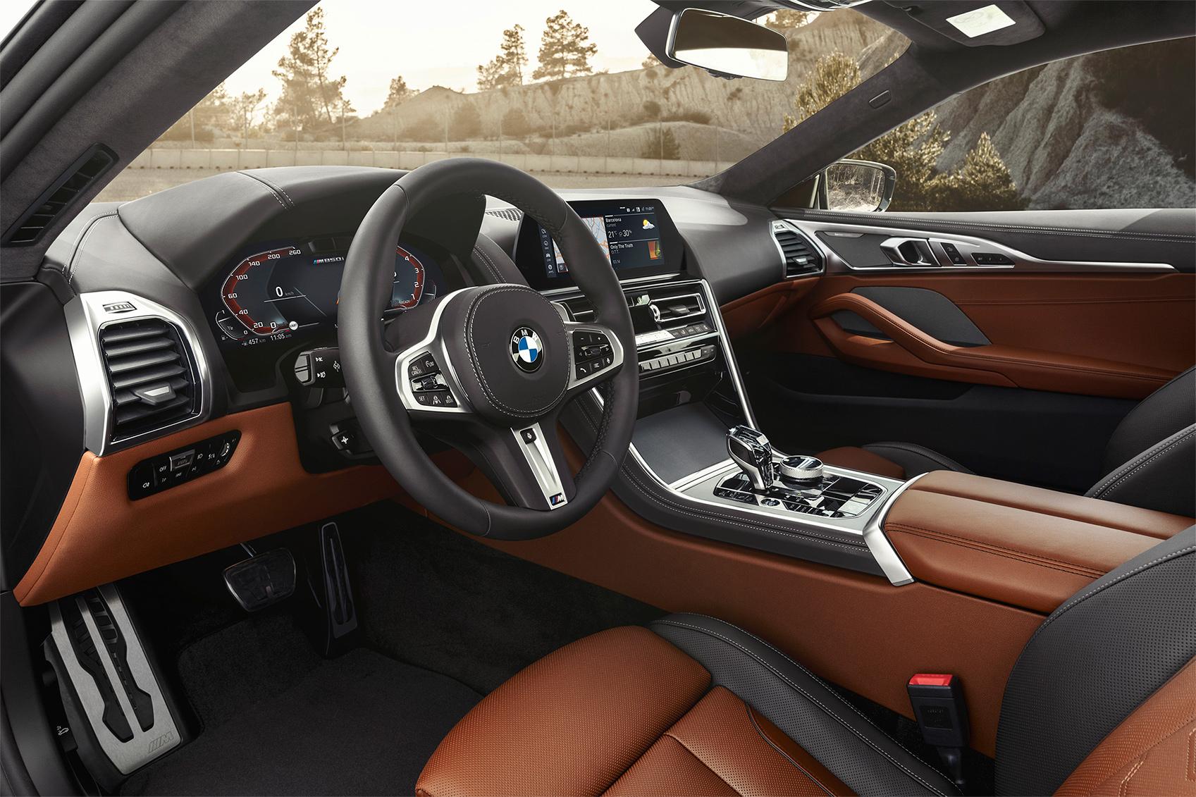 TrackWorthy - 2019 BMW M850i xDrive Coupe (13)