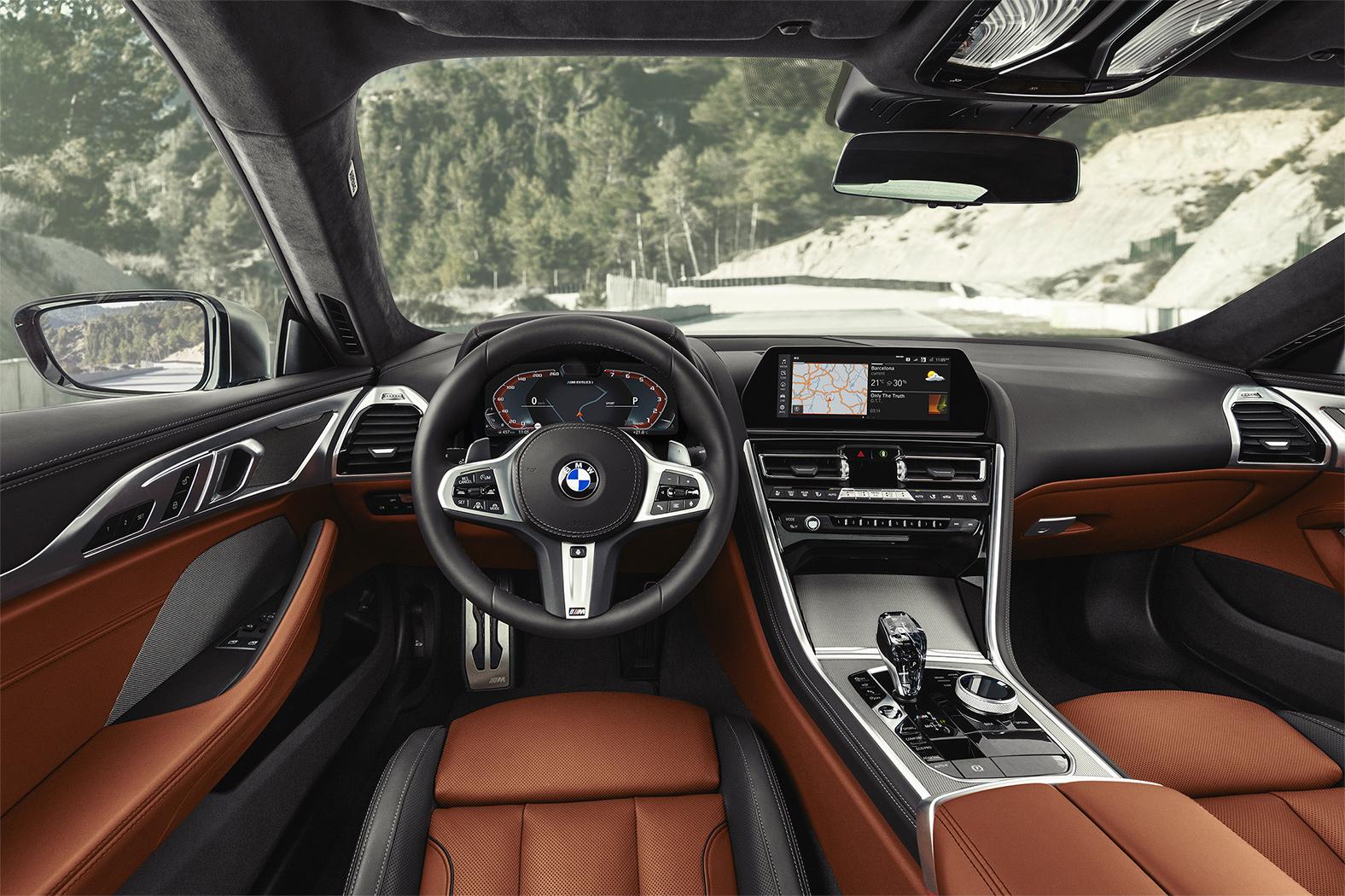 TrackWorthy - 2019 BMW M850i xDrive Coupe (14)