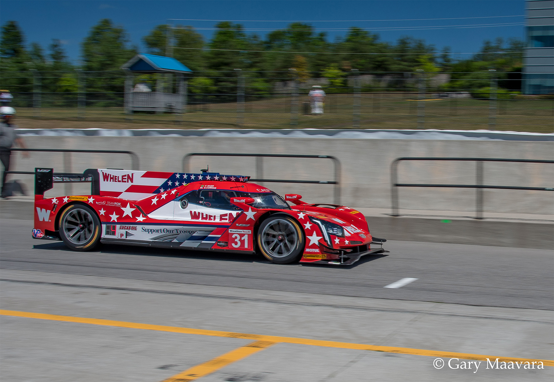 TrackWorthy - Mobil 1_#31_Cadillac_Whelen Engineering Racing_practice