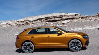 Preview: 2019 Audi Q8