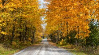 Fall Day Trips Ontario