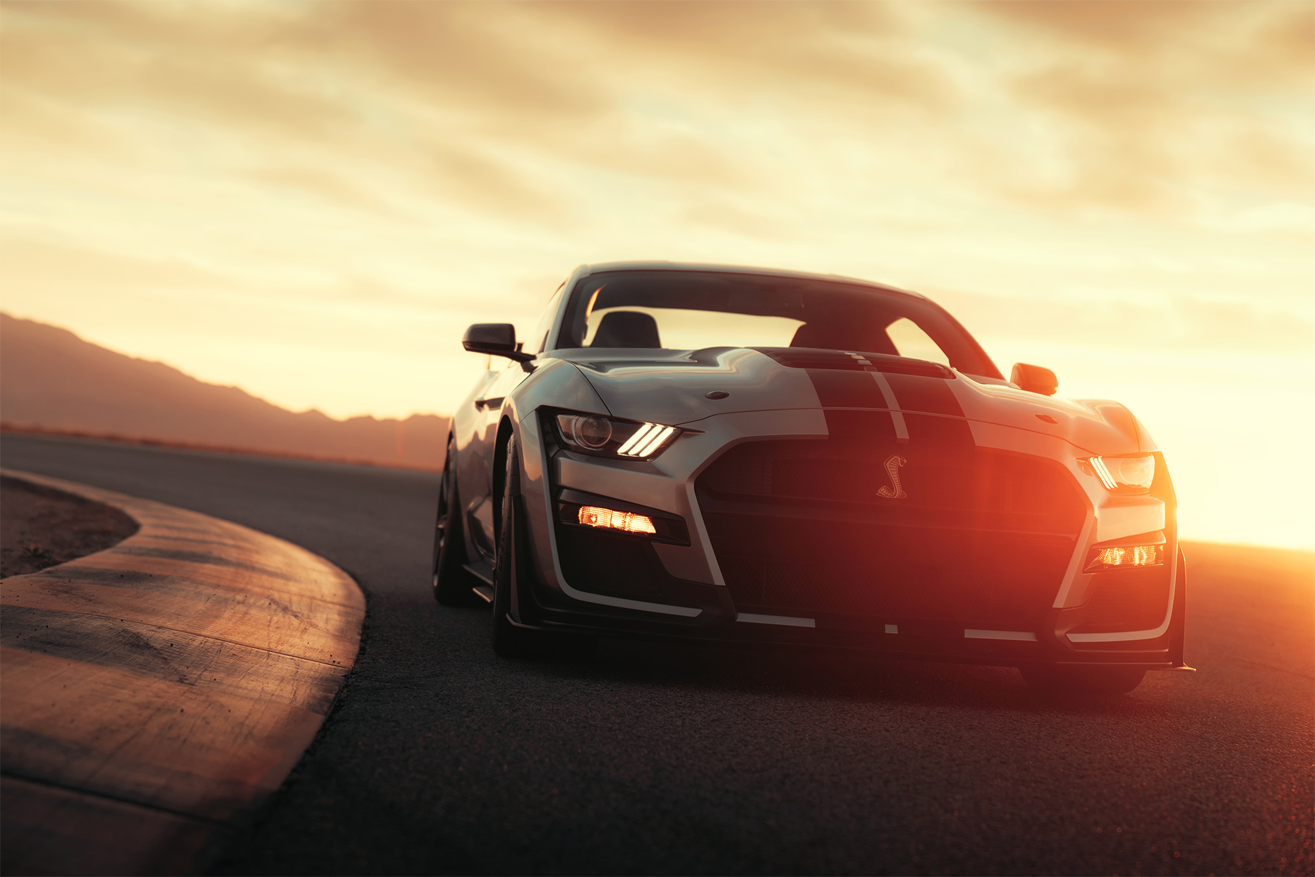 TrackWorthy - 2020 Ford Mustang Shelby GT500 (24)