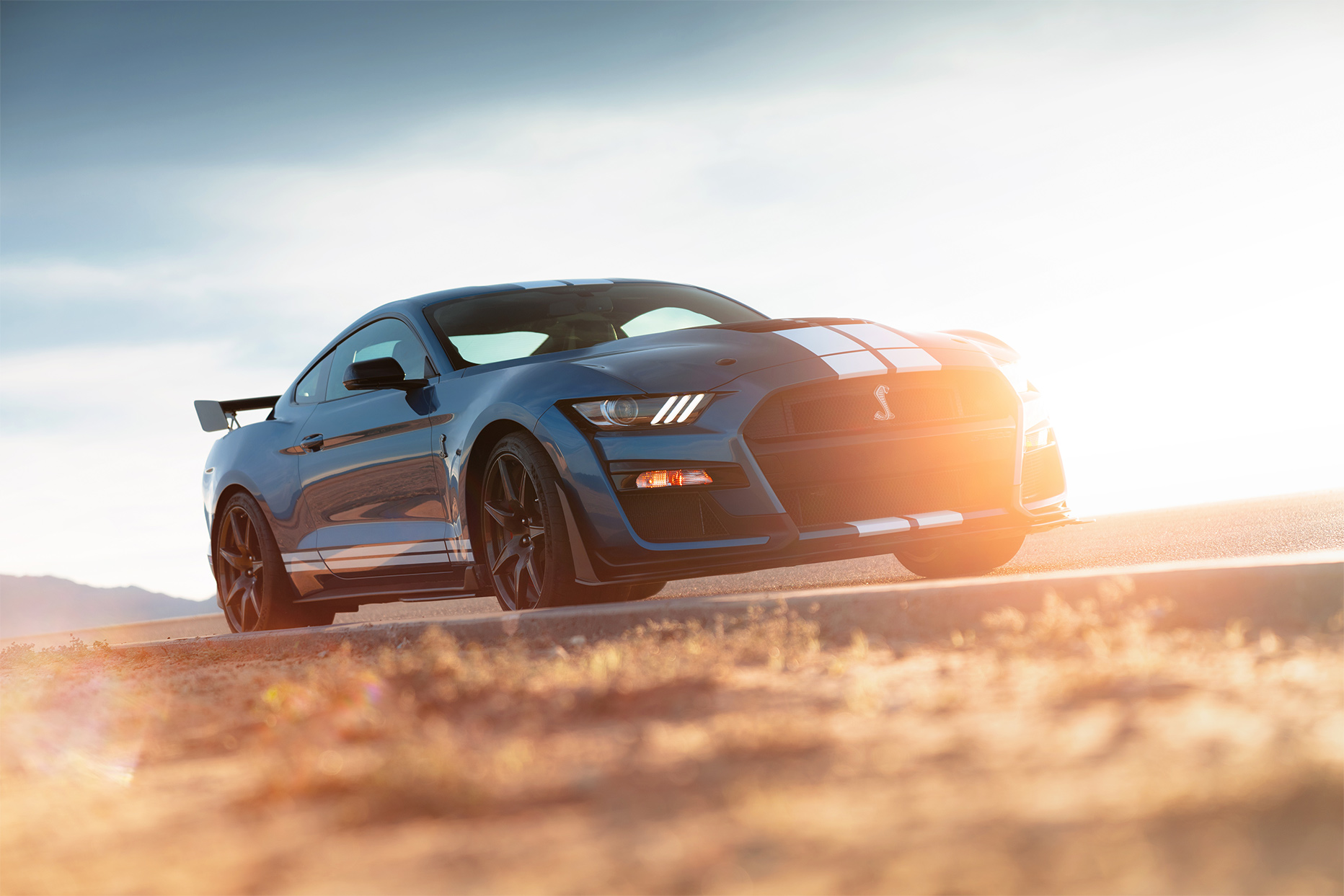 TrackWorthy - 2020 Ford Mustang Shelby GT500 (25)