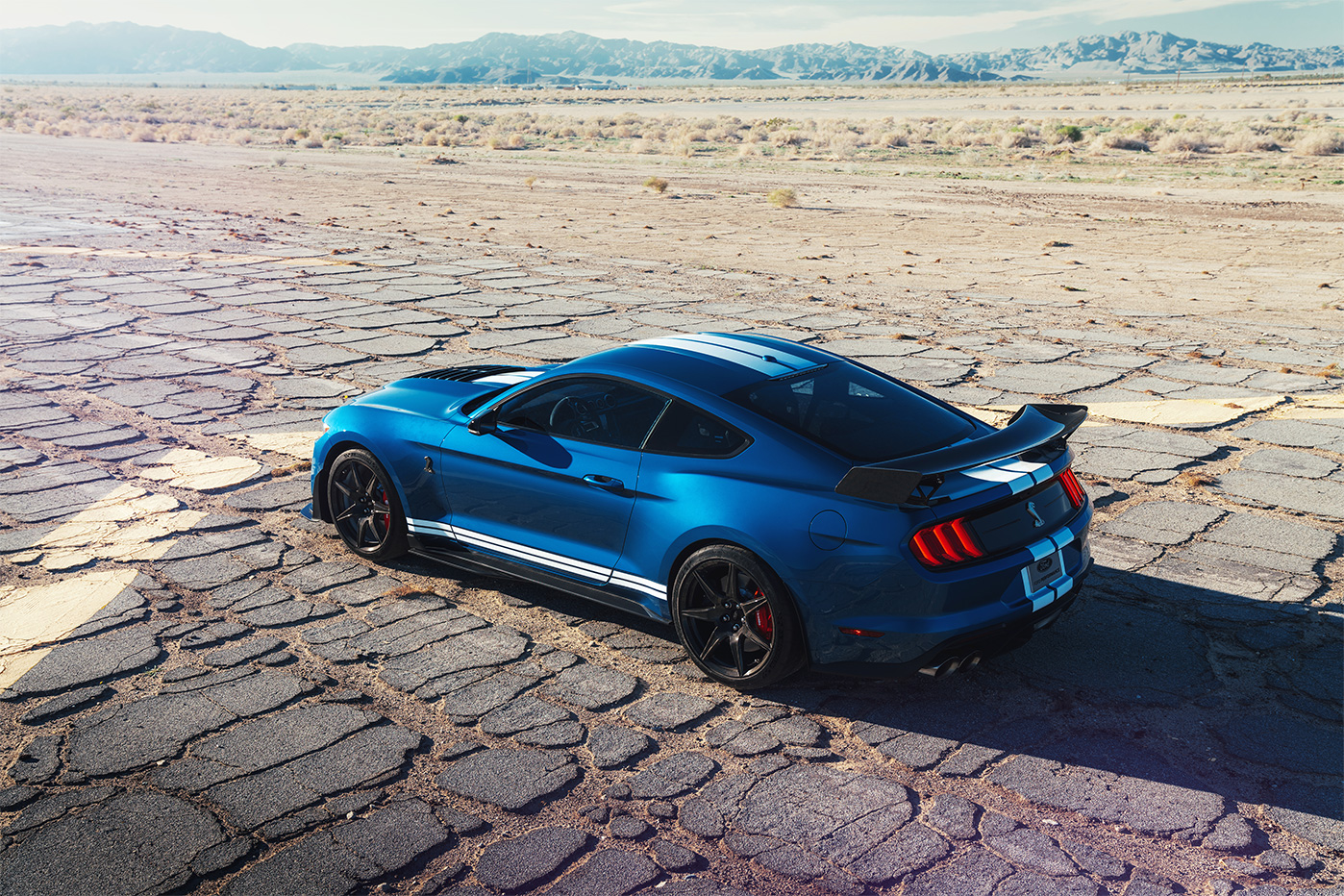 TrackWorthy - 2020 Ford Mustang Shelby GT500 (30)