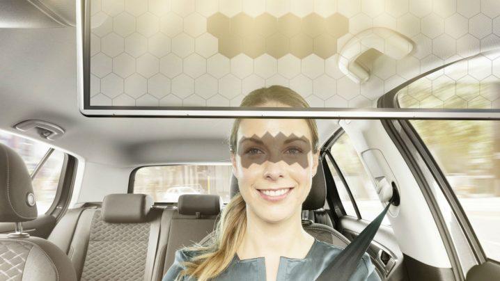 Enter the Virtual Visor
