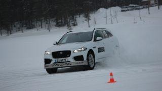 Jaguar Ice Academy