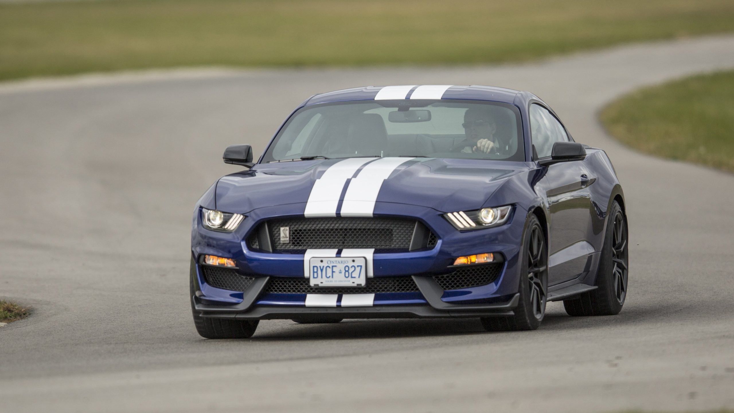 track day GT350