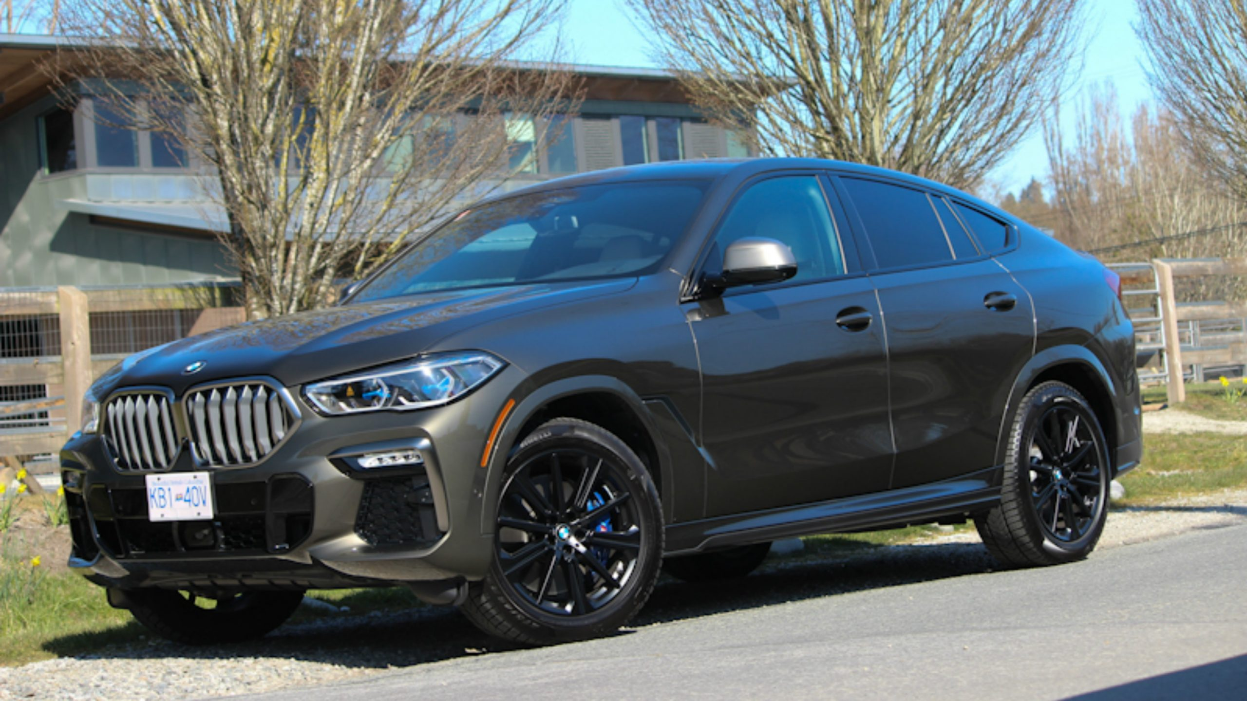 Review 2020 Bmw X6 M50i Wheels Ca